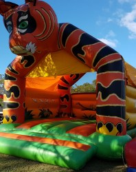 Jumping Castle 1