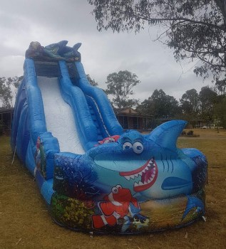 Shark-Waterslide-2